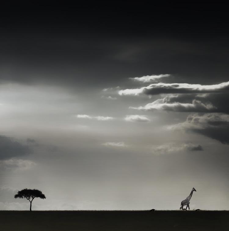 africa-horizon