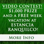 contest-button